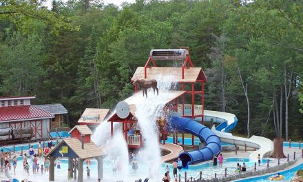 Enchanted Forest Water Safari ranked among nation's top water parks