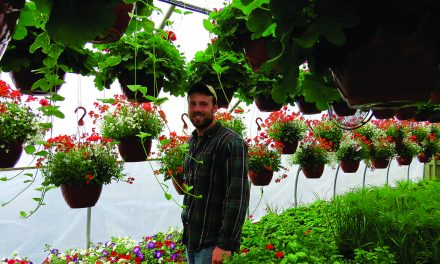 Business is blooming for Matteson's Market