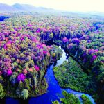 Old Forge area foliage is at about 40 percent